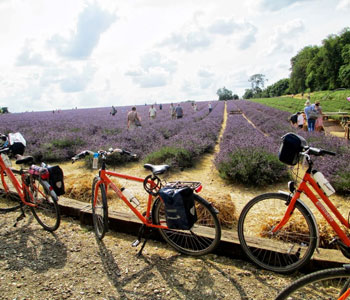 Self-Guided Cycling Holidays in France