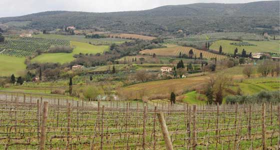 Walking in Tuscany | Guided Walking Holidays in Italy