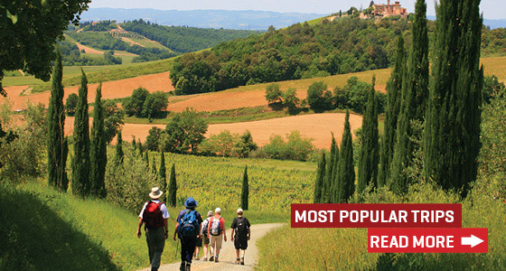 Our most popular walking and cycling holidays in the UK and Europe