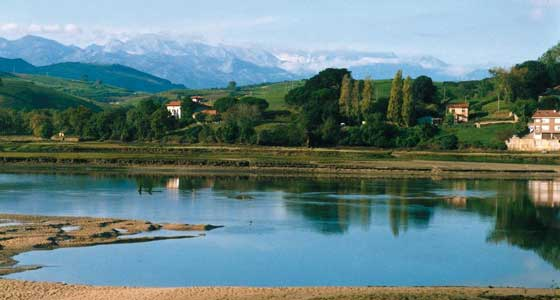 Self-Guided Walking Holidays in Spain - Camino de Santiago