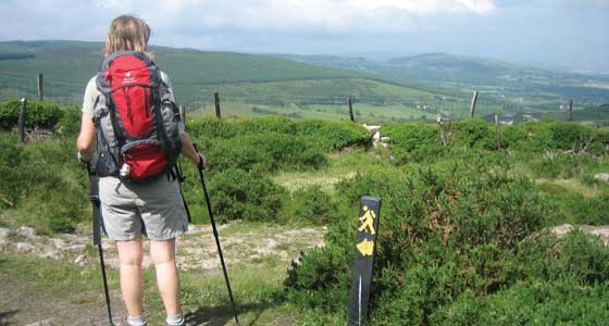 Self-Guided Walking Holidays around Ireland's Wicklow Way - 7 Days