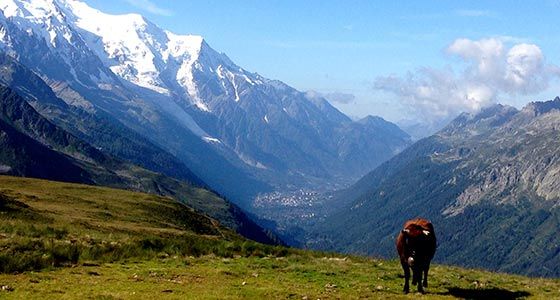 Tour du Mont Blanc Classic - Self-Guided Walking Holidays