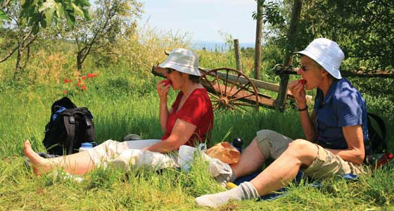Self-Guided Walking Holidays in Italy's Tuscany region - 7 Days