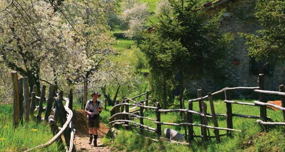 Self-Guided Walking Holidays in Italy's Apuan Alps