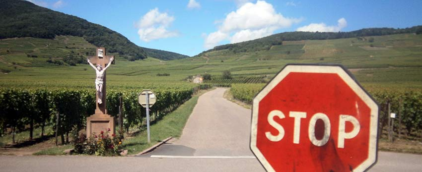 Cycling and wine tasting in France's Alsace region with Sherpa Expeditions