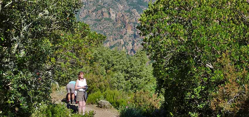 Corsica walking holidays - Sherpa Expeditions
