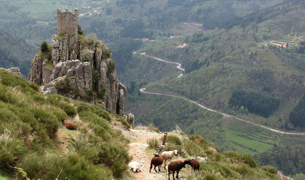 Sherpa Expeditions_Country Walking Holidays_Cevennes France