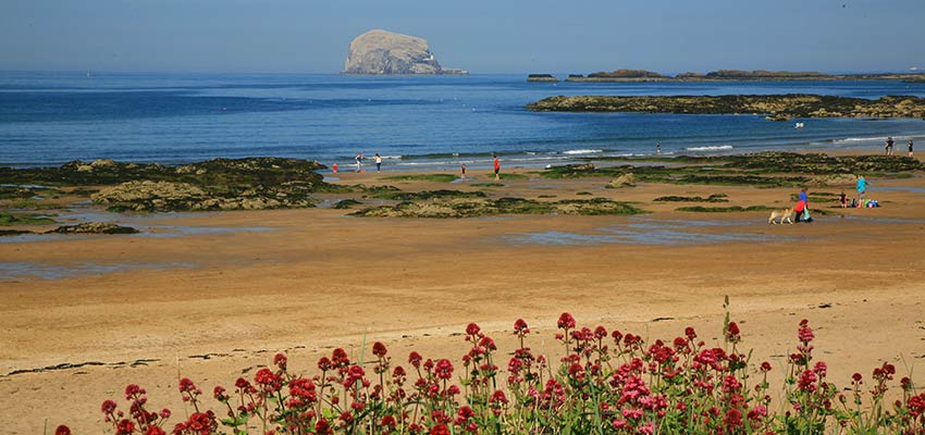 Bass Rock on John Muir Way in Scotland