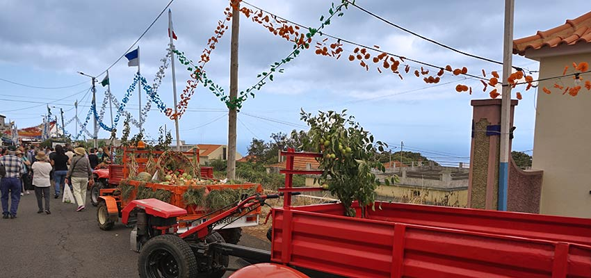 Madeira walking holidays and apple cider festival - Sherpa Expeditions