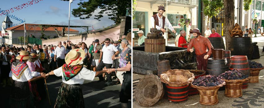 visit Madeira in September for the wine festival - Sherpa Expeditions
