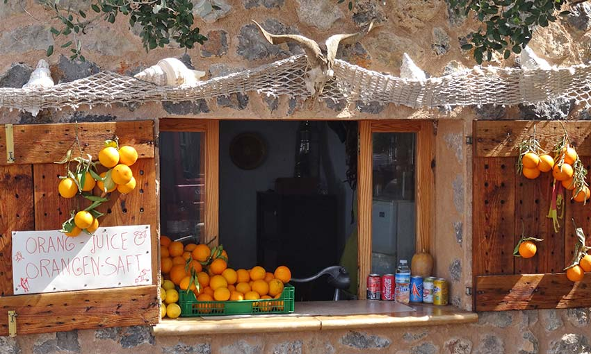 Oranges in Majorca - Sherpa Expeditions walking holidays