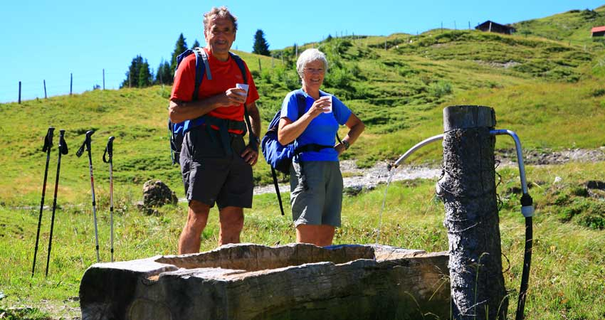 Self-Guided Walking in Switzerland