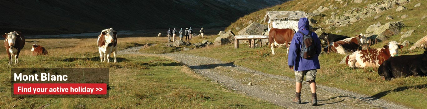 Guided Walking Holidays in France