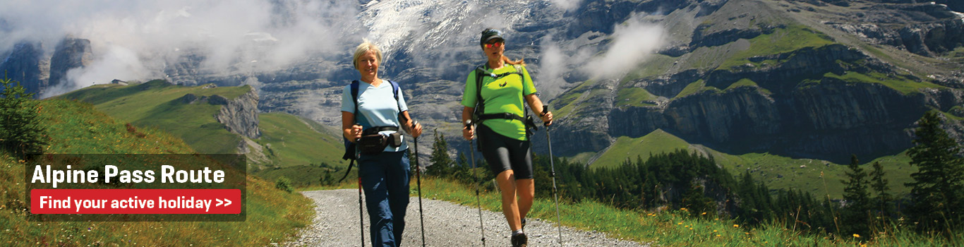 Walking Holidays on the Alpine Pass Route 2