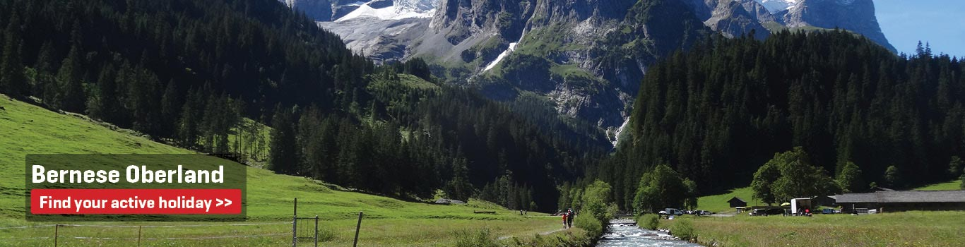 Walking Holidays in the Bernese Oberland 4